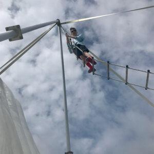 Crazy Ladder